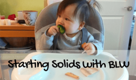 infant baby led weaning BLW workshop
